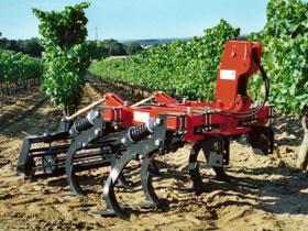 Photo du Entretien du sol Cultivigne