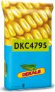 Photo du Variétés de maïs grain DKC 4795