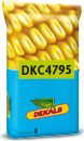 Photo du Variétés de maïs grain DKC 4795