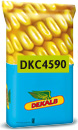 Photo du Variétés de maïs grain DKC 4590