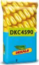 Photo du Variétés de maïs grain DKC 4590
