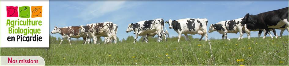 Photo du Chambres d\'Agriculture, Ceta... Favoriser le développement de l'agriculture biologique en Picardie