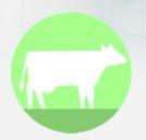 Photo du Aliments de production Methio TP