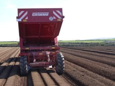 Photo du Planteuses à pommes de terre GB 330