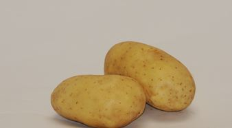 Photo du Pommes de terre de consommation Markies