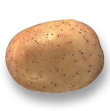 Photo du Pommes de terre de consommation Melody