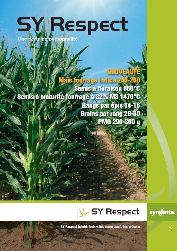 Photo du Variétés de maïs fourrager SY Respect