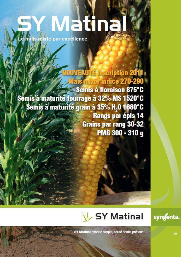 Photo du Variétés de maïs mixte SY Matinal