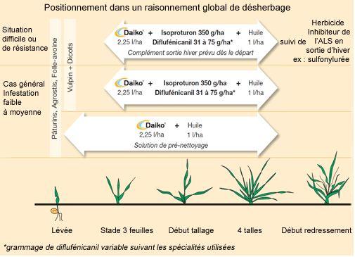Photo du Herbicides céréales Daiko, Datamar