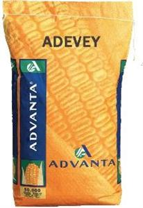 Photo du Variétés de maïs mixte Adevey