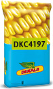 Photo du Variétés de maïs mixte DKC 4197