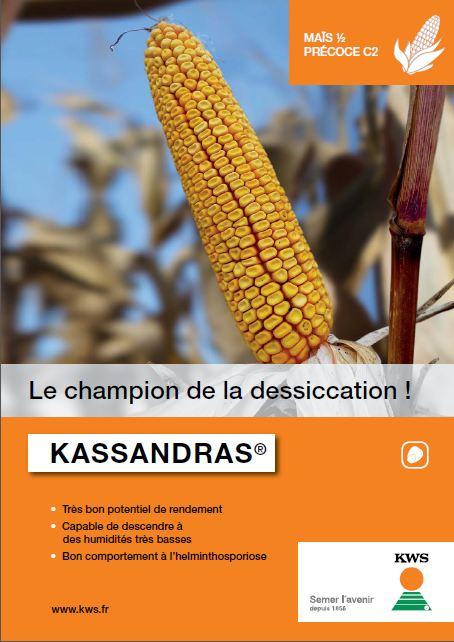 Photo du Variétés de maïs grain Kassandras