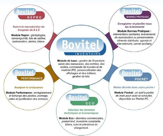 Photo du Logiciels de gestion d\'élevage Bovitel