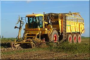 Photo du Basé dans le Nord Pas de Calais Travaux agricoles, location de matériels, travaux publics