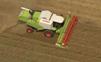 Photo du Coopératives de commercialisation des céréales Collecte de plus d'1,5 millions de tonnes de céréales