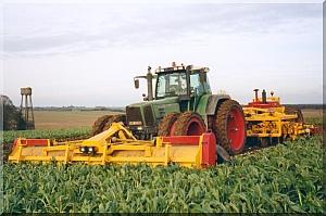 Photo du Récolte des betteraves Arracheuse 12 rangs repliable